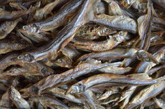 Dried small anchovies fish. At the market in Chinatown. Food background texture Stock Image