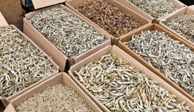 Dried small anchovy fish Royalty Free Stock Images