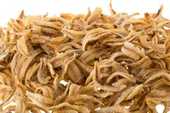 Dried Small fish anchovies and crispy Seafood isolated on white. Background Stock Photography