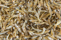 Dried Small fish anchovies used in Asian cuisine Stock Photo