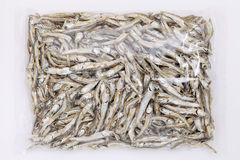 Dried small fish Royalty Free Stock Photos