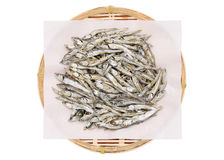 Dried small fish Royalty Free Stock Images