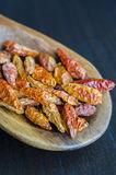 Dried small red hot chilli pepper (Bird's eye) Stock Images