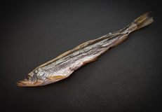 Dried smelt. Dried smelt on a dark background. Selective focus Royalty Free Stock Photography