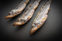 Dried smelt. Dried smelt on a dark background. Selective focus Royalty Free Stock Image