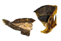Dried snakehead fish. Stock Images