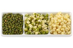 Dried and soaked Mung Bean Royalty Free Stock Photo