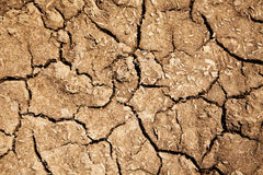 Dried soil Stock Photo