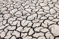 Dried soil ,crack in the land. Background Royalty Free Stock Images