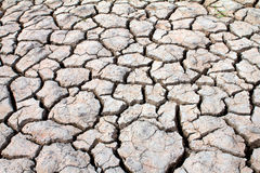 Dried soil ,crack in the land Royalty Free Stock Image