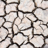 Dried soil ,crack in the land. Background Royalty Free Stock Photography