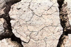 Dried soil ,crack in the land Royalty Free Stock Images