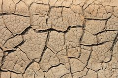 Dried soil with many cracks Royalty Free Stock Image