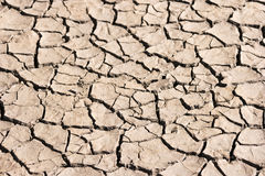 Dried Soil of a Mud Flat Stock Photo
