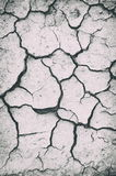 Dried soil with multiple cracks Royalty Free Stock Photo