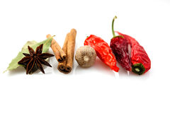 Dried Spices Royalty Free Stock Photos