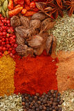 Dried spices Stock Image