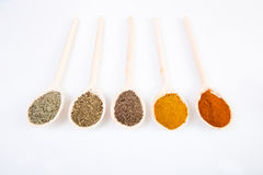 Dried spices on spoons Royalty Free Stock Photography