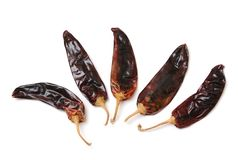 Dried spicy peppers Stock Image