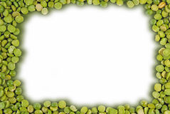 Dried split pea border Royalty Free Stock Photo