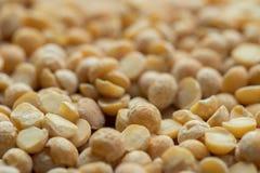 Dried split yellow peas. Macro royalty free stock images