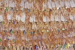 Dried Squid. Show for sell on beach at Nakhon Si Thammarat, Thailand Royalty Free Stock Photography