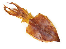 Dried Squid Stock Photography