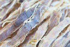 Dried squid Stock Photo