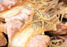 Dried squid Stock Photo
