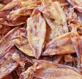Dried squid. Stock Photo