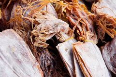 Dried squid Stock Photos