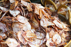 Dried squid Royalty Free Stock Image