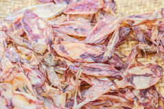 Dried squid for sale. Stock Image