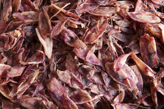 Dried Squid in The Sea Food Market Royalty Free Stock Photo