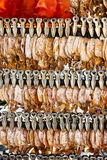 Dried squid and sweet fish Stock Image