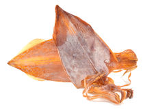 Dried squid Stock Image