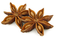 Dried star anise  (Illicium verum) Royalty Free Stock Images