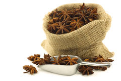 Dried star anise  (Illicium verum) Stock Images