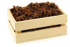 Dried star anise  Illicium verum Royalty Free Stock Image