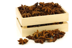 Dried star anise  Illicium verum Stock Images