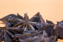 Dried star anise spice. In a pile on an orange background with focus to a single spice and copy space above stock images
