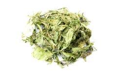 Dried Stevia Stock Image