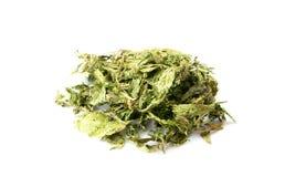 Dried Stevia Royalty Free Stock Photos