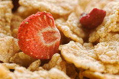 Dried strawberry and cereals Stock Photos