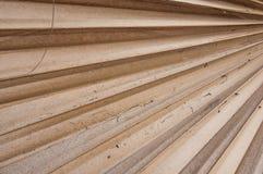 Dried sugar palm leaf Stock Image