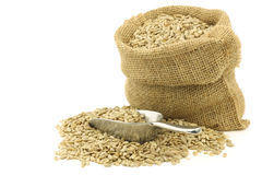 Dried sunflower seeds in a burlap bag Stock Photo