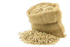 Dried sunflower seeds in a burlap bag Royalty Free Stock Photography