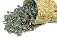 Dried sunflower seeds. Royalty Free Stock Images