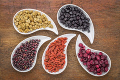 Dried superfruit collection Royalty Free Stock Photo