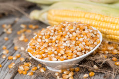Dried Sweetcorn Stock Photography